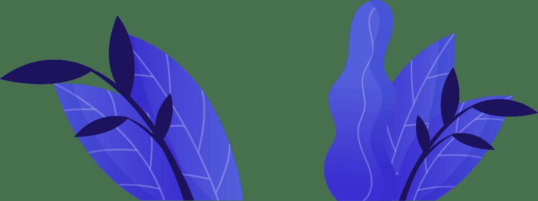 Digital Marketing - image seven-video-leaf-new on https://hermodesign.com
